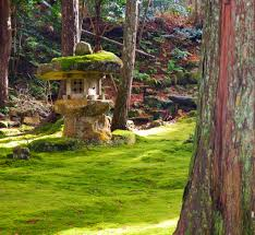 This images displays the a moss garden as a product of typical Japanese Gardening. Japan is known for its work into gardening for the public to enjoy.