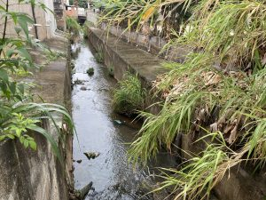 Stream with some debris in Lavras, MG, Brazil