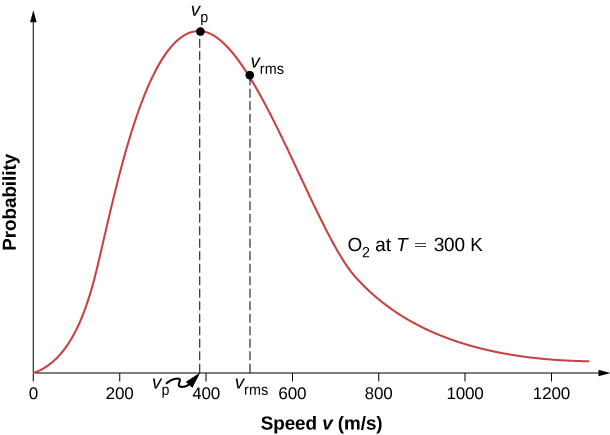 The figure is a graph of probability versus velocity v in meters per second of oxygen gas at 300 kelvin. The graph has a peak probability at a velocity V p of just under 400 meters per second and a root-mean-square probability at a velocity v r m s of about 500 meters per second. The probability is zero at the origin and tends to zero at infinity. The graph is not symmetric, but rather steeper on the left than on the right of the peak.