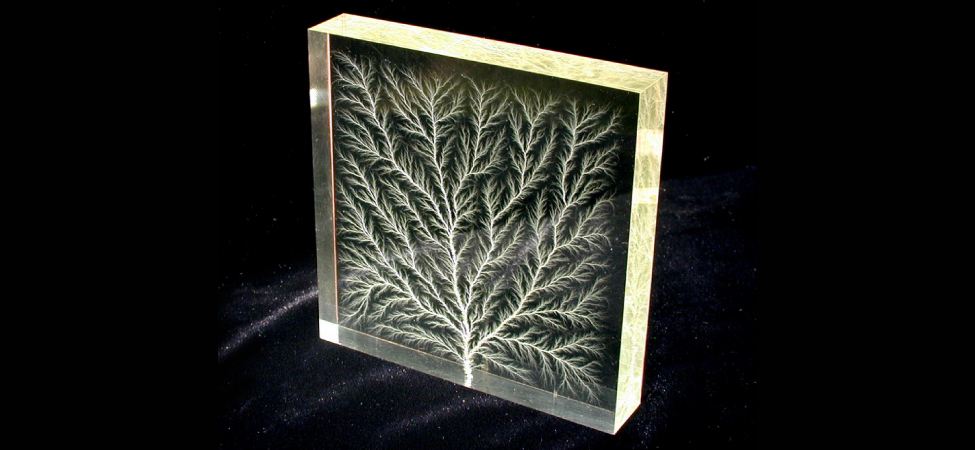 Photograph of a glass block with the pattern of an intricately branching tree within it.
