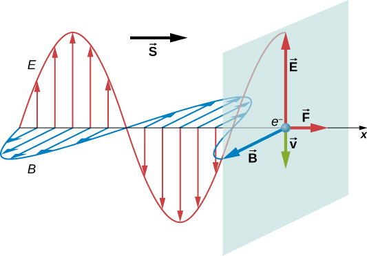 An electromagnetic wave propagates in the positive x direction. Its electric field is shown as a sine wave in the xy plane and magnetic field is shown as a sine wave in the xz plane. A vector S points in the direction of propagation. An electron is shown on the x axis. Four vectors originate from here. Vector E points in the positive y direction, vector B points in the positive z direction, vector F points in the positive x direction and vector v points in the negative y direction. E and B are equal in length. F and v are equal in length and smaller than the other two.