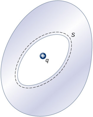 Figure shows an egg shape with an oval cavity within it. The cavity is surrounded by a dotted line just outside it. This is labeled S. There is a positive charge labeled q within the cavity.