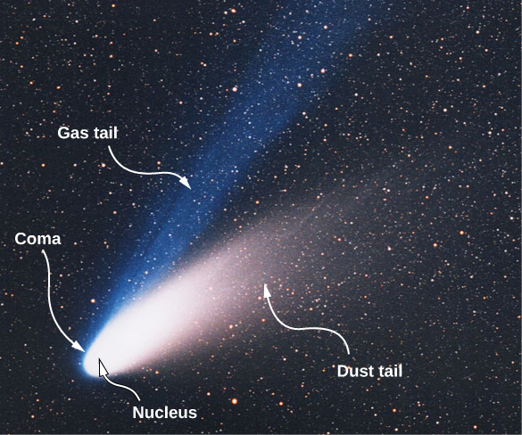 Figure shows a comet with a bright white part labeled nucleus. The part around this is labeled coma. Two tails radiate from here. They are labeled gas tail and dust tail.