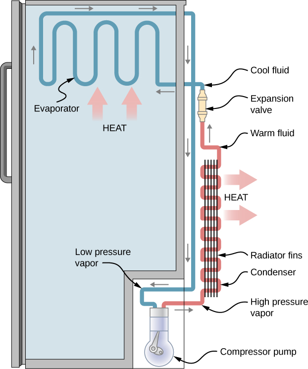 The figure shows schematic diagram and working of a refrigerator.