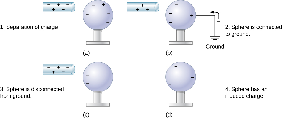 In part a, a rod with positive sign is brought near a neutral metal sphere. The surface of the sphere near the rod has negative signs and the surface far from it has positive signs. In part b, the sphere is connected to ground by a wire attached to the surface farthest from the rod. Negative charge is shown moving from the ground up to the sphere. The negative charges on the sphere near the rod are unaffected but there are fewer positive charges where the sphere is grounded. In part c, the sphere is disconnected from ground. The rod with positive sign is close to one surface of the sphere where negative charges are shown, and the other surface has no charges shown. In part d, the positive rod is absent, and the sphere has negative signs on it uniformly distributed on its surface.