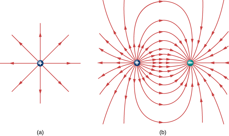 In part a, electric field lines emanating from a positive charge are shown as straight arrows radiating out from the charge in all directions. In part b, a pair of charges is shown, with one positive and the other negative. The field lines are represented by curved arrows. The arrows start from the positive charge, radiating outward but curving to end at the negative charge. The outer field lines extend beyond the drawing region, but follow the same behavior as those that are within the drawing area.