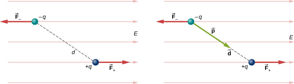 In figure a dipole in a uniform electric field is shown along with the forces on the charges that make up the dipole. The dipole consists of a charge, minus q, and a positive charge, plus q, separated by a distance d. The line connecting the charges is at an angle to the horizontal so that the negative charge is above and to the left of the positive charge. The electric field E is horizontal and points to the right. The force on the negative charge is to the left, and is labeled as F minus. The force on the positive charge is to the right, and is labeled as F plus. Figure b shows the same diagram with the addition of the dipole moment vector, p, which points along the line connecting the charges, from the negative to the positive charge.