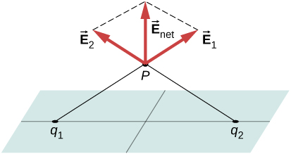 Figure shows a plane. Points q1 and q2 are on the plane, equidistant from its center. Lines connect these points to a point P above the plane. Arrows labeled vector E1 and vector E2 originate from point P and point in directions opposite to the lines connecting P to q1 and q2 respectively. A third arrow from P bisects the angle made by the first two arrows. This is labeled vector E subscript net.