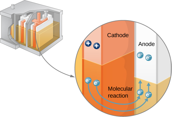 The figure shows the cathode and anode of a cell and the flow of electrons from cathode to anode.
