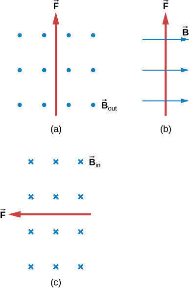 Case a: B is out of the page, F is up. Case b: B is to the right, F is up. Case c: B is into the page, F is to the left.
