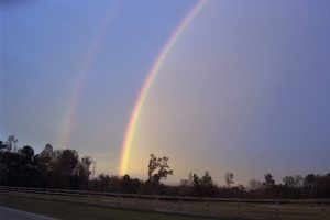 A double rainbow with spectacular bands of seven colors.