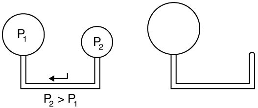 When two balloons are attached to the ends of a glass tube air flows from one to the other if their sizes are different.