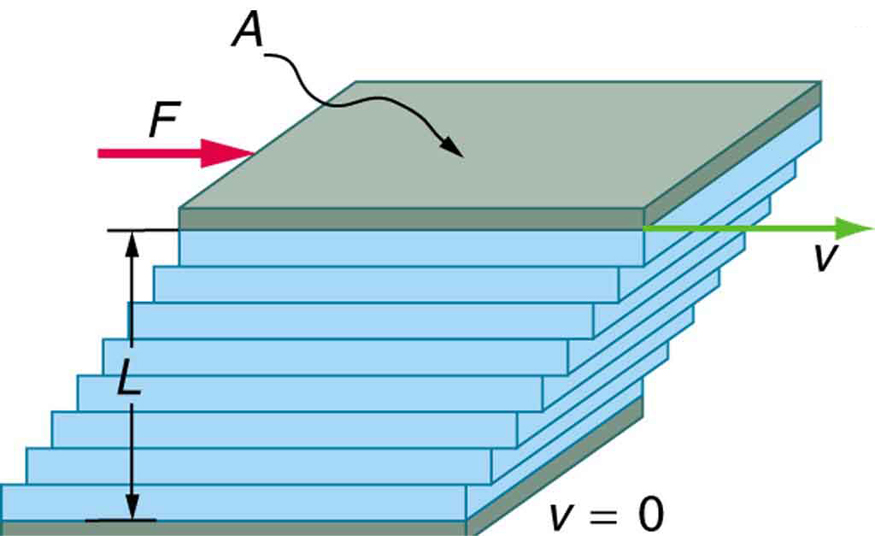 The figure shows the laminar flow of fluid between two rectangular plates each of area A. The bottom plate is shown as fixed. The distance between the plates is L. The top plate is shown to be pushed to right with a force F. The direction of movement of the layer of fluid in contact with the top plate is also toward right with velocity v. The fluid in contact with the plate in the bottom is shown to be in rest with v equals zero. As we see through the layers above the one on the bottom plate, each show a small displacement toward right in increasing order of value with the topmost layer showing the maximum.