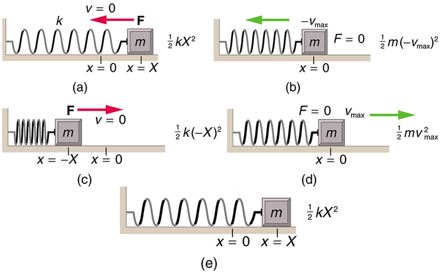 Figure a shows a spring on a frictionless surface attached to a bar or wall from the left side, and on the right side of it there's an object attached to it with mass m, its amplitude is given by X, and x equal to zero at the equilibrium level. Force F is applied to it from the right side, shown with left direction pointed red arrow and velocity v is equal to zero. A direction point showing the north and west direction is also given alongside this figure as well as with other four figures. The energy given here for the object is given according to the velocity. In figure b, after the force has been applied, the object moves to the left compressing the spring a bit, and the displaced area of the object from its initial point is shown in sketched dots. F is equal to zero and the V is max in negative direction. The energy given here for the object is given according to the velocity. In figure c, the spring has been compressed to the maximum level, and the amplitude is negative x. Now the direction of force changes to the rightward direction, shown with right direction pointed red arrow and the velocity v zero. The energy given here for the object is given according to the velocity. In figure d, the spring is shown released from the compressed level and the object has moved toward the right side up to the equilibrium level. F is zero, and the velocity v is maximum. The energy given here for the object is given according to the velocity. In figure e, the spring has been stretched loose to the maximum level and the object has moved to the far right. Now again the velocity here is equal to zero and the direction of force again is to the left hand side, shown here as F is equal to zero. The energy given here for the object is given according to the velocity.