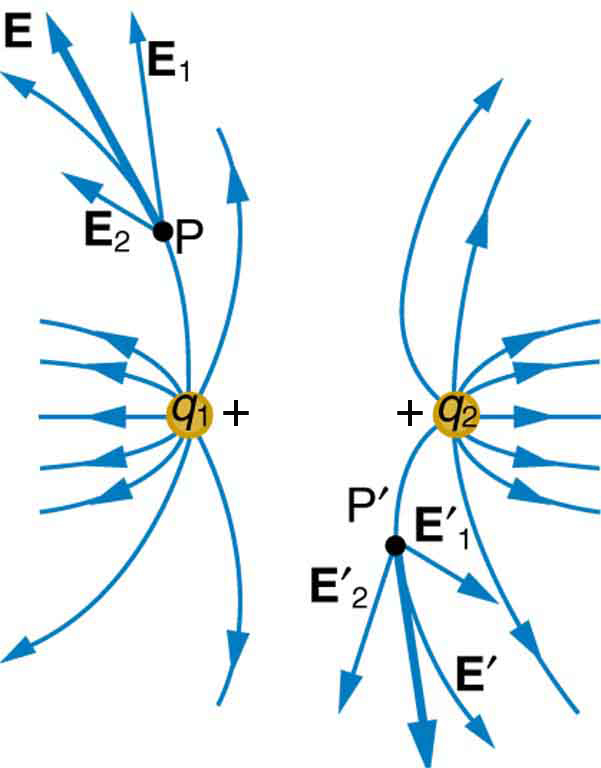Two charges q one and q two are placed at a distance and their field lines shown by curved arrows move away from each other. At a point P on the field lines emanating from q one, the resultant electric field is represented by a vector arrow tangent to the curve representing this field line. A point P prime on a field line emanating from the charge q two and the resultant electric field is represented by a vector arrow tangent to the curve representing this field line.