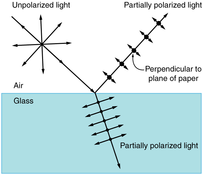 The schematic shows a block of glass in air. A ray labeled unpolarized light starts at the upper left and impinges on the center of the block. Centered on this ray is a symmetric star burst pattern of double headed arrows. From this point where this ray hits the glass block there emerges a reflected ray that goes up and to the right and a refracted ray that goes down and to the right. Both of these rays are labeled partially polarized light. The reflected ray has evenly spaced large black dots on it that are labeled perpendicular to plane of paper. Centered on each black dot is a double headed arrow that is rather short and is perpendicular to the ray. The refracted ray also has evenly spaced dots, but they are much smaller. Centered on each of these small black dots are quite large doubled headed arrows that are perpendicular to the refracted ray.