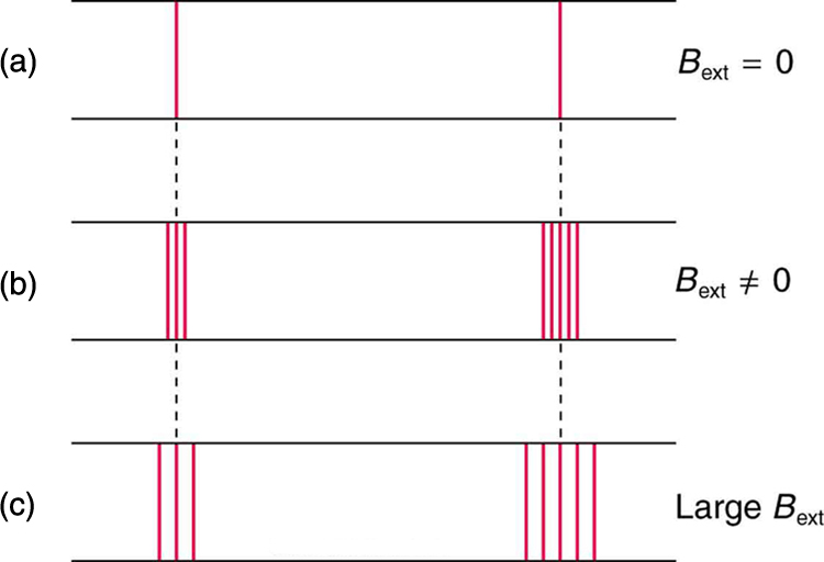 The figure shows the effect of magnetic field on spectral lines. In the first case, two spectral lines are shown when there is no external magnetic field. In the second case, when magnetic field is applied, the spectral lines split into several lines; the line on the left splits into three lines. The line on the right splits into five. In the third case, the magnetic field is large. The left line is again split into three lines and the right into five, but the split lines are farther apart than they are when the external magnetic field is not as strong.