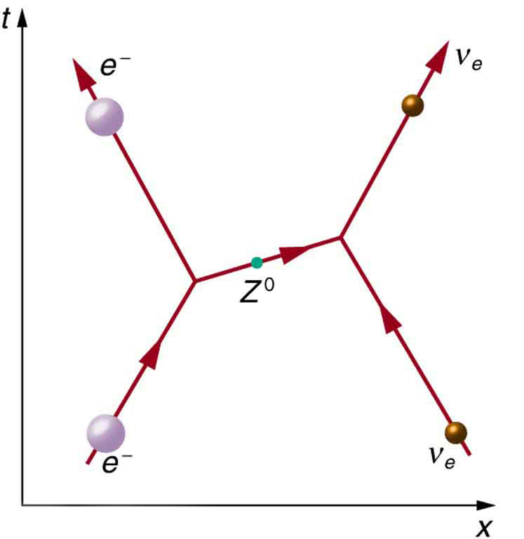 A Feynman diagram is shown in which time proceeds in along the vertical y axis and distance along the horizontal x axis. An electron and an electron neutrino are shown approaching each other, exchanging a virtual zee zero particle, then moving apart.