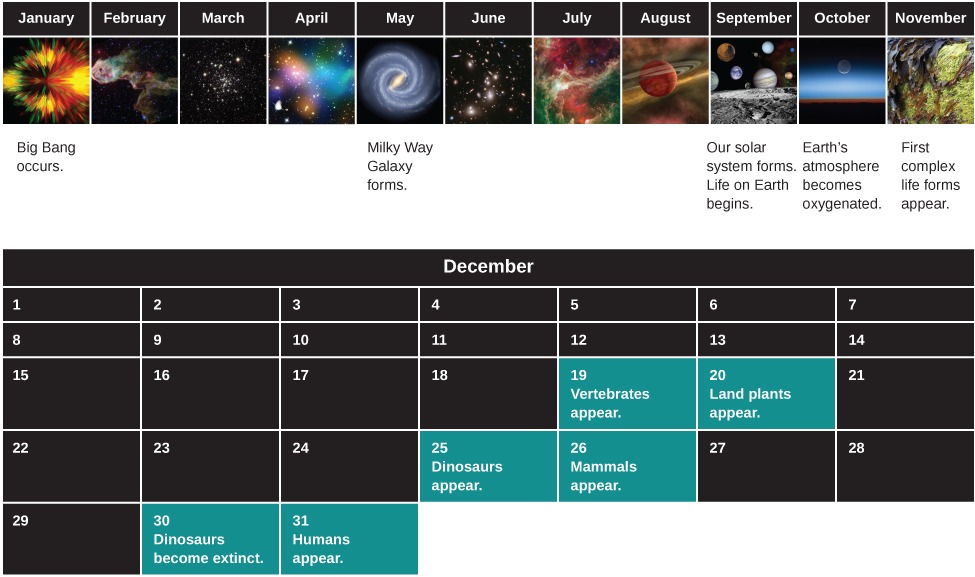 "Diagram of the History of the Universe, compressed into a single year. The upper portion of the figure shows the calendar as one row from January to November. Events of special significance have been labeled. Starting at far left under January is labeled ""Big Bang occurs"". Continuing to the right, May is labeled ""Milky Way Galaxy forms"". Under September, ""Our Solar System forms, Life on Earth Begins"". Under October, ""Earth's atmosphere becomes oxygenated"". Finally, under November is ""First complex life forms appear"". The lower portion shows the entire month of December with significant events listed for certain dates. On December 19th ""Vertebrates appear"". Next, ""Land plants appear"" on Dec. 20th. On December 25th ""Dinosaurs appear"". ""Mammals appear"" on the 26th. On the 30th ""Dinosaurs become extinct"", and ""Humans appear"" on December 31st."