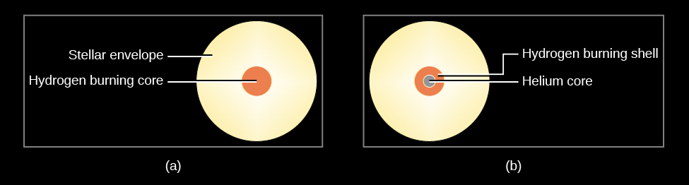 "Stellar Structure During and After the Main Sequence. In (a), on the left, the ""Hydrogen burning core"" is shown as a small disk within a larger, yellow disk depicting the non-fusion ""Stellar envelope."" In (b), on the right, the ""Helium core"" is drawn as a smaller disk within a larger disk labeled, ""Hydrogen burning shell."" These are within a larger ""Stellar envelope,"" which is drawn in yellow."