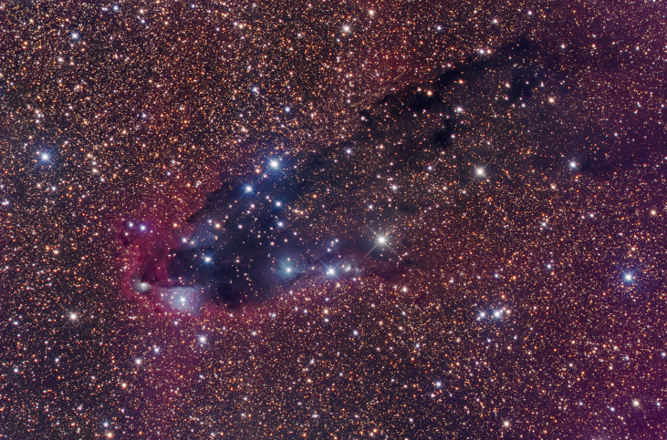 Cloud of Gas and Dust. Photograph of a small portion of the constellation Scorpius, showing dark dust clouds, numerous bright stars and a red emission nebula (at center).