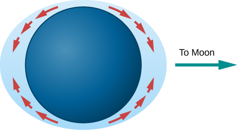 "Tidal Bulges. In this illustration, the Earth is drawn as a dark blue disk within a light blue ellipse representing the oceans. The perimeter of the ellipse comes closest to the Earth's surface at the poles and is furthest away at the equator. Red arrows are drawn showing the flow of water from the poles to the equatorial bulges. An arrow points from the right-hand bulge toward the right and is labeled ""To Moon""."