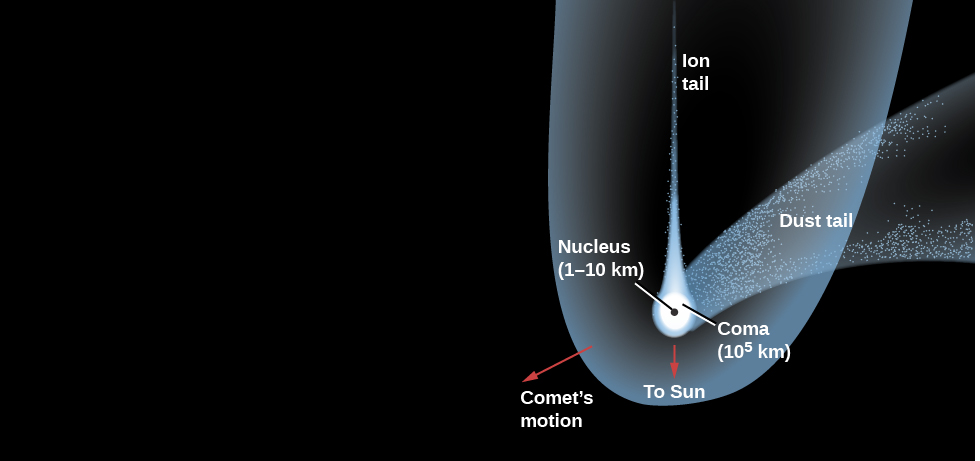 "Diagram of a Typical Comet. Just below left of center, the ""Nucleus (1-10 km)"" is drawn as a black dot. Surrounding the nucleus is the ""Coma (105 km)"", drawn in white. Surrounding the coma and extending vertically to the top of the image is the thin ""Ion tail"", drawn in white. Beginning at the coma and curving away to the right is the wide ""Dust tail"", drawn in semi-transparent white. Surrounding the comet and extending in the same direction as the ion tail is the ""Hydrogen envelope (107 km)"", drawn in semi-transparent white. A red arrow points downward from the nucleus labeled ""To Sun"". Finally, a red arrow points from the nucleus toward the lower left (opposite to the direction of the dust tail) and is labeled ""Comet's motion""."