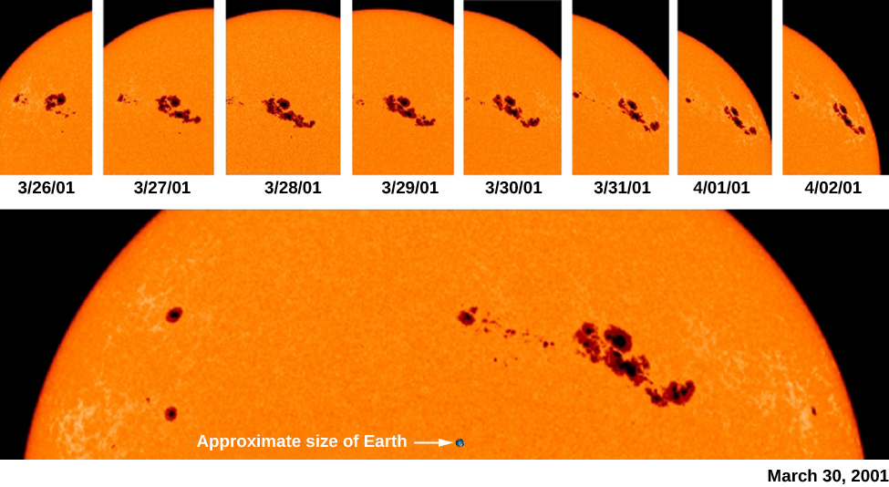 "An image of the rotation of sunspots across the sun's surface. A series of images at the top shows the movement of sunspots over time. A enlarged view of the top portion of the sun is shown at bottom, with a black dot labeled ""Approximate size of Earth""."