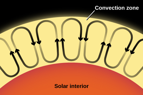 Illustration of Solar Convection. At bottom the solar interior is labeled and represented as an orange semicircle. Above and in contact with the solar interior is the convection zone, which is labeled and drawn in yellow. Within the convection zone are seven ovals representing seven individual convection cells. Each of these ovals has two arrows drawn on its perimeter. One arrowhead points downward toward the solar interior, while the arrowhead on the opposite side of the oval points upward toward the surface of the convection zone. These arrows indicate the upward and downward motions of the hot gas in each convection cell.