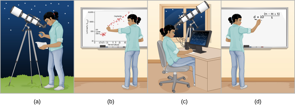 "Cartoon of How to Use a Cepheid to Measure Distance. Panel (a) is labeled, ""Find a cepheid variable star and measure its period."" The illustration shows an observer at her telescope. She is looking through the eyepiece at a star with a stopwatch in one hand. This represents the observer determining the period of variability. Panel (b) is labeled, ""Use the period-luminosity law to calculate the star's luminosity."" The illustration shows the observer plotting her measurements on a period-luminosity graph. Panel (c) is labeled, ""Measure the star's apparent brightness."" The illustration shows the observer again observing the star, but this time using electronic equipment connected to the telescope and a computer to measure the star's brightness. Finally, panel (d) is labeled, ""Compare the luminosity with the apparent brightness to calculate the distance."" The illustration shows the observer performing the calculation by hand on a whiteboard."