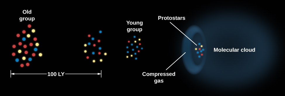 Diagram of Propagating Star Formation. At left are depicted two old groups of stars. Below these groups a distance scale of 100 light years is shown. At the center of the diagram is a smaller, tighter grouping of young stars. To the right of the young group is an arc of compressed gas and an even tighter grouping of protostars within the arc. On the extreme right of the diagram adjacent to the protostars, a dark molecular cloud is portrayed.