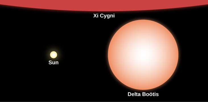 "Relative Sizes of Stars Compared to the Sun. In this illustration the Sun is represented at center-left with a yellow disk labeled ""Sun."" The giant star labeled ""Delta Boötis"" is drawn at right with an orange disk about 10 times the size of the Sun's disk. At the top of this image, covering the entire upper portion of the figure, a small part of the supergiant labeled ""Xi Cygni"" is shown in red."
