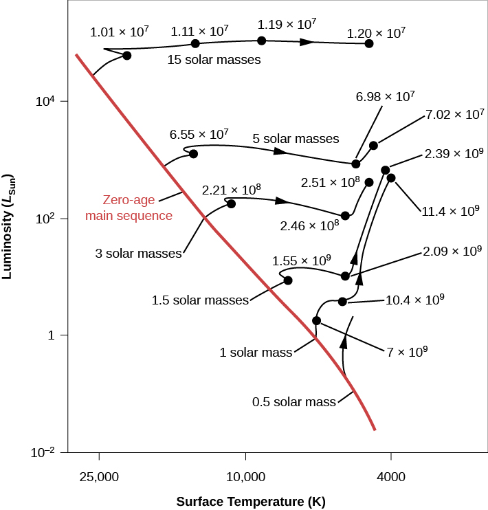 "Evolutionary Tracks of Stars of Different Masses. In this plot the vertical axis is labeled ""Luminosity (LSun)"" and goes from 10-2 at the bottom to over 104 at the top. The horizontal axis is labeled ""Surface Temperature (K)"" and goes from 25,000 on the left to 4,000 on the right. The ""Zero-age main sequence"" is drawn as a diagonal red line beginning above L = 104 at the upper left of the image down to T ~ 4000 at the lower right. Six evolutionary tracks are drawn. Beginning at the top, a star of ""15 solar masses"" is plotted. It leaves the main sequence above L ~ 104 and T ~ 25,000. The track moves rightward across the top of the plot. The star maintains a relatively constant luminosity, but its surface temperature decreases with time. At ""1.01 × 107"" years its temperature is about 20,000 K. At ""1.11 × 107"" years it has fallen to about 15,000 K. At ""1.19 × 107"" years T is about 9000 K, and the track ends at ""1.2 × 107"" years near 4000 K. Next, a star of ""5 solar masses"" is plotted beginning near L ~ 103, where it leaves the main sequence. The star maintains a relatively constant luminosity, but its surface temperature decreases with time. At ""6.55 × 107"" years its temperature is about 12,000 K. but its surface temperature decreases with time. At ""2.39 × 107"" years it has fallen to about 5000 K. Then the luminosity rises slightly to the final plotted point at ""7.02 × 107"" years near 4000 K. Next, a star of ""3 solar masses"" leaves the main sequence near L = 102 and 15,000 K. After ""2.21 × 108"" years its temperature has fallen to near 11,000 K. After ""2.46 × 108"" years its temperature has dropped to near 6000 K. Then, its luminosity increases by about a factor of ten where its curve ends at ""2.51 × 107"" years and 5000 K. Next, a star of ""1.5 solar masses"" leaves the main sequence near L = 30 and 9000 K. After ""1.55 × 109"" years its temperature has fallen to near 7500 K. After ""2.09 × 109"" years, its temperature has dropped to near 5000 K. Then, its luminosity increases by about a factor of one hundred where its curve ends at ""2.39 × 109"" years and 4000 K. Next, a star of ""1 solar mass"" leaves the main sequence at L = 1 and 5700 K. After ""7 × 109"" years its temperature is nearly the same, but its luminosity has increased slightly. After ""10.4 × 109"" years, its temperature has dropped to near 5000 K, and its luminosity has increased about 20 times. Then, its luminosity steadily increases to where its curve ends at ""11.4 × 109"" years, L ~ 103 and T ~ 4000 K. Finally, a ""0.5 solar mass"" star is partially plotted. Its curve begins at L ~ 10-1 near T ~ 5000. Its curve is a short arrow pointing upward as its evolutionary timescale is too great for this diagram."