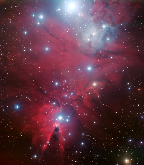 """Image of the Young Cluster N G C 2264. This youthful cluster derives its name from the shape outlined by its brightest stars. The """"Christmas Tree"""" is upside down in this image. The brightest star at the top of the frame is the base of the tree. The top of the tree is the star above the dark v-shaped lane in the nebula just left of the center at the bottom of the image."""
