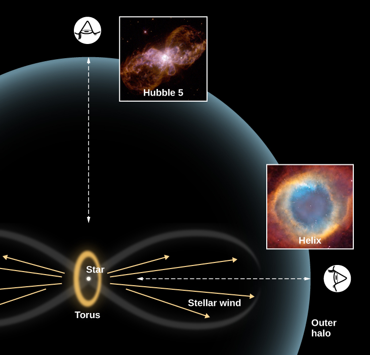 "Diagram to Explain the Different Shapes of Planetary Nebulae. In the lower left-hand portion of this figure, a schematic representation of a planetary nebula is shown. A yellow ellipse, labeled ""Torus"" is drawn with a white dot labeled ""Star"" at its center. The long axis of the ellipse is oriented vertically. Several yellow arrows are drawn horizontally pointing away from the star. These are labeled ""Stellar wind."" A faint figure-eight encloses the stellar wind on each side of the star and torus. Finally, a large, faint ""Outer halo"" surrounds the figure-eight and torus, centered on the star. At top left, directly above the star, the profile of a human eye is shown looking in the direction of the star. The line of sight is marked with a double-headed dashed arrow. What a planetary nebula would look like along this line of sight is illustrated with an image of Hubble 5 to the right of the eye. Another eye is drawn at lower right looking through the figure-eight toward the star. The line of sight is marked with a double-headed dashed arrow. What a planetary nebula would look like along this line of sight is illustrated with an image of the Helix Nebula above the eye."
