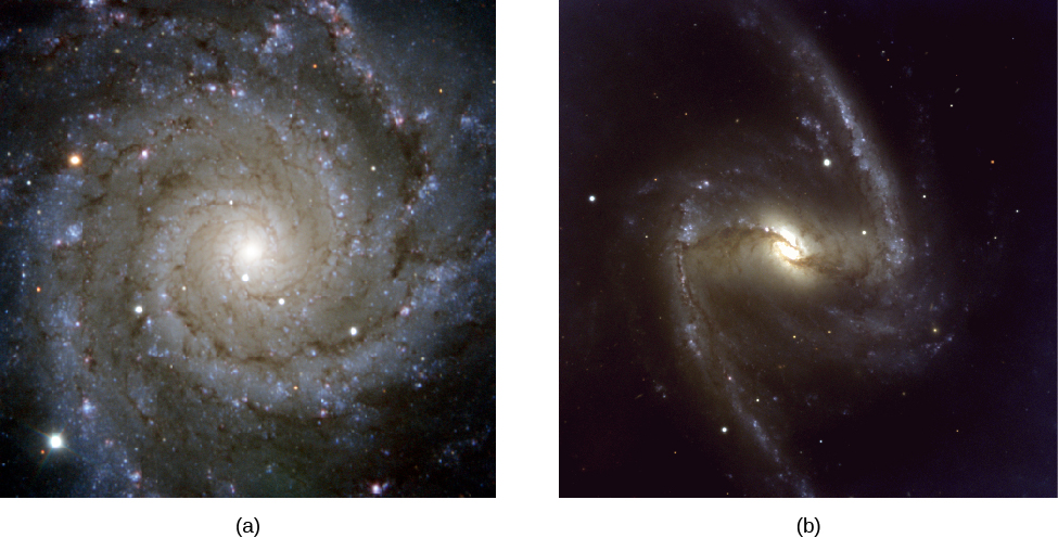 Unbarred and Barred Spiral Galaxies. Panel (a), at left, shows the beautifully symmetric spiral form of M74. The blue spiral arms and dust lanes spiral neatly into the bright nucleus at center. Panel (b), at right, shows the barred spiral NGC 1365. A bar of yellow stars projects out from the nucleus at center, with a nearly straight blue arm at each end of the bar.
