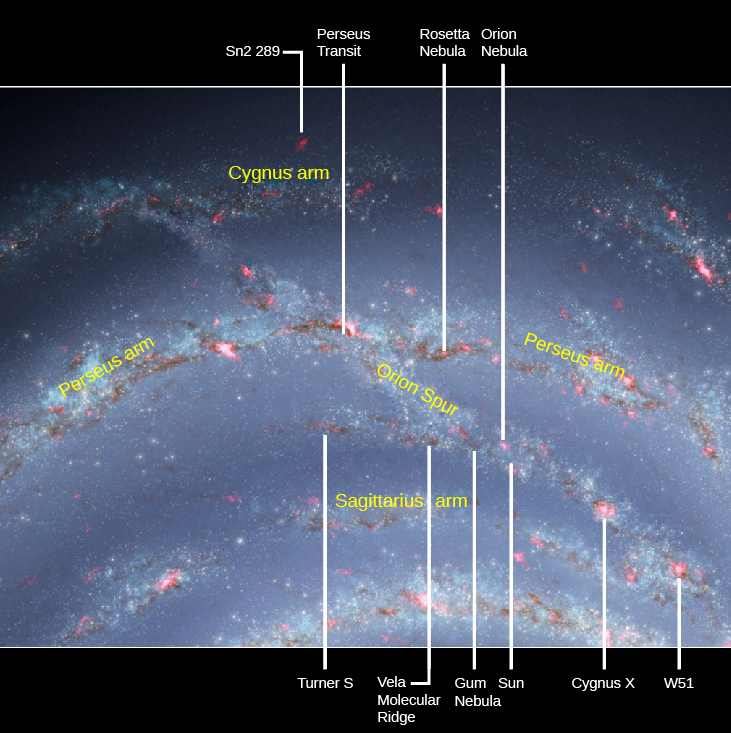 "The Sun and the Orion Spur. Portions of three spiral arms of the Milky Way are shown in this illustration. The ""Cygnus arm"" at top, the ""Perseus arm"" at center and the ""Sagittarius arm"" at bottom. The ""Orion spur"" is a stream of stars and gas runs from the Cygnus arm diagonally downward to the right through the Perseus arm and on to the Sagittarius arm. The Sun is located in the portion of the spur between the Perseus and Sagittarius arms. Objects of interest are indicated with arrows from above and below the figure. At top, from left to right are: ""Sn2 289"", ""Perseus transit"", ""Rosetta nebula"" and the ""Orion nebula"". At bottom, from left to right are: ""Turner S"", ""Vela molecular ridge"", ""Gum nebula"", ""Sun"", ""Cygnus X-1"" and ""W51""."