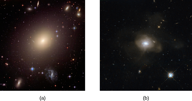 Elliptical Galaxies. Panel (a), at left, shows the giant elliptical ESO 325-G004, a large and nearly featureless oval of light with a bright nucleus. Panel (b), at right, shows an unnamed elliptical that has more structure within the otherwise featureless oval, suggesting a relatively recent formation from the collision of two spiral galaxies.