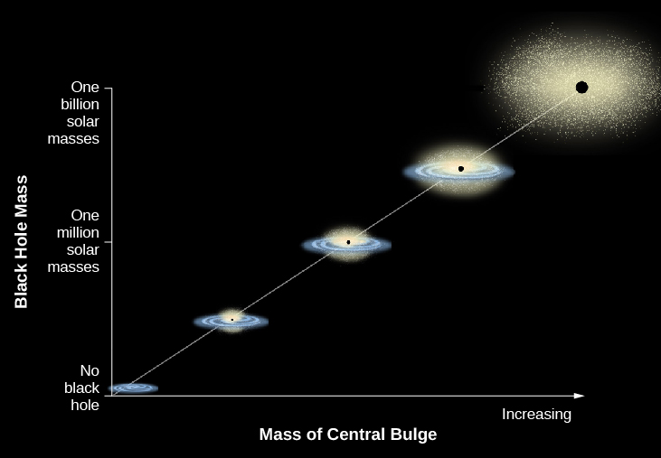 "In this plot the vertical axis is labeled ""Black Hole Mass"". The scale goes from ""No black hole"" at bottom, ""One million solar masses"" in the middle and ""One billion solar masses"" at top. The horizontal axis is labeled: ""Mass of Central Bulge"". The scale is arbitrary, with an arrow pointing to the right labeled ""Increasing"". A straight white line is drawn from lower left to upper right with illustrations of galaxies along its length. At bottom left is a small spiral galaxy. Moving upward along the line, the galaxies increase in size as do the black dots at the center of each representing black holes. The final image at upper right is a very large elliptical with a very large black hole."